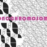 Monochromosonen 15